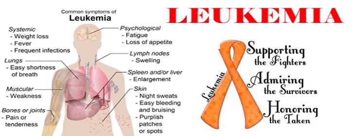 leukemia in adults prognosis